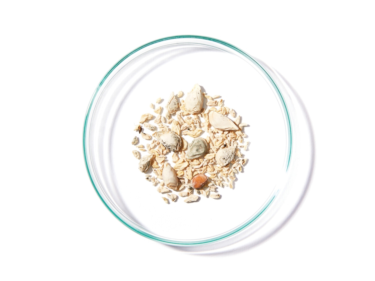 脂肪酸フラボノイド